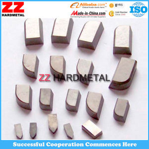 Carbide Brazed Insert pictures & photos
