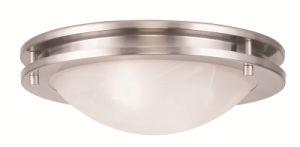 Moderm Simplism Style Ceiling Light (7057-91)