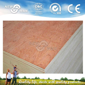 Door Skin Plywood for Interior Door (NTE-PL5003) pictures & photos