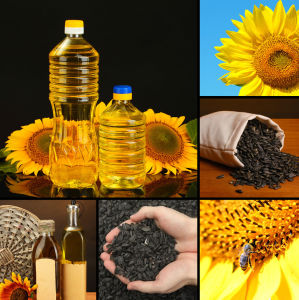 China Non-Transgenic Sunflower Oil for Cooking