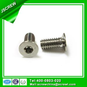 M4 Torx Flat Head Bolt Screw for Antomobile pictures & photos