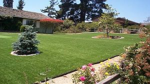 Artificial Lawn for Garden Artificial Grass Synthetic Turf pictures & photos