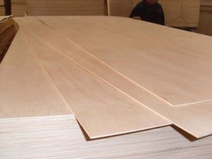 Okume High Quality Commercial Plywood pictures & photos