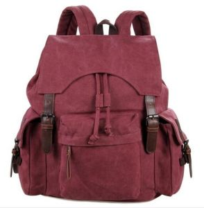 Travel Satchel Shoulder School Bag Trendy Backpack Sh-16061643 pictures & photos