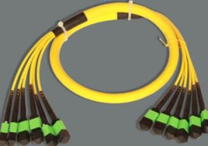 MPO-MPO Singlemode 76cores Trunk Fiber Optical Patch Cord pictures & photos