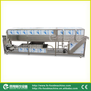 Top & Bottom Spray Washing Machine for Vegetable/Fruit pictures & photos