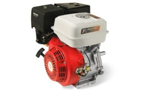 7.0HP Gasoline Engine with Ce, Son pictures & photos