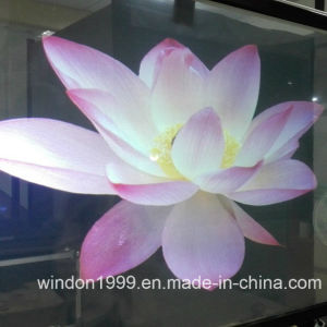 Self Adhesive Windon Foil Holographic Rear Projection Film pictures & photos