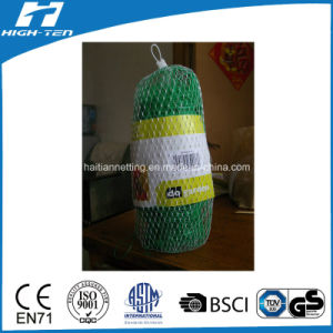 PP Material Green Color Trellis Net pictures & photos