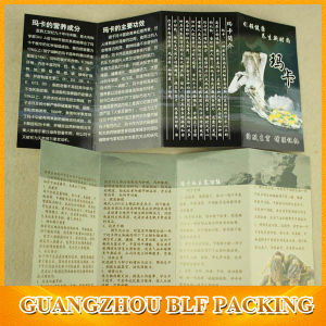 China Custom Paper Print Brochures (BLF-F073) pictures & photos