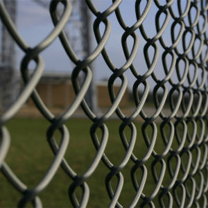 Made in China Low Price Chain Link Fence pictures & photos