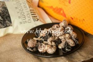 2015 Autumn Dried 4-5cm Tea Flower Mushroom pictures & photos