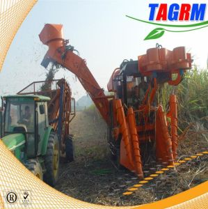Popular with Oversea High Productivity Sugarcane Harvester (SH30)