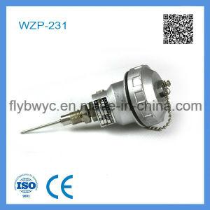 Wzp-231 High Precision PT100 Rtd pictures & photos
