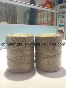 100% Jute Sisal Yarn Rope (ASLT-YARN) pictures & photos