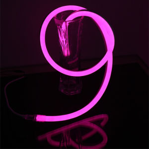 110V/220V Ultra-Thin Single Color LED Neon Flex Light pictures & photos