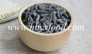 Chinese Organic Food Dried Fruit