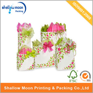 Customized Printed Kraft Paper Bag with Twist Paper Handle (QYCI15399) pictures & photos