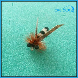 Vavid and Attractive Insect Flies for Fly Fishing pictures & photos