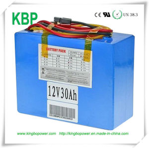 12V Petroleum Exploration Instrument Backup Power Battery pictures & photos