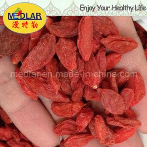 Medlar Red Goji Chinese Wolfberry pictures & photos