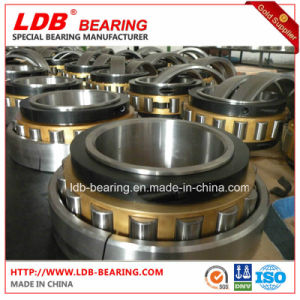 Split Roller Bearing 100b100m (100*152.4*65) Replace Cooper pictures & photos