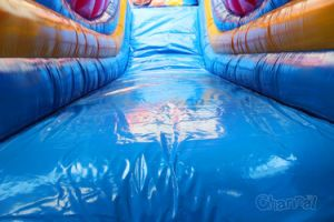Giant Commerical Shark Inflatable Slide Chsl422 pictures & photos