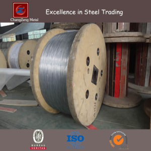 Zinc Coated Low/High Carbon Steel Wire (CZ-W53) pictures & photos