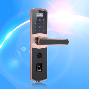 High Quality Fingerprint and IC Card Door Lock with Reomote Controller (UL-780) pictures & photos