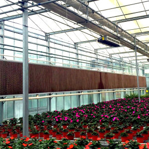 2016 Hot Sale Greenhouse Cooling Pad pictures & photos