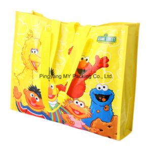 OEM Manufacturer Waterproof PP Woven Shopping Bag for Advertising pictures & photos