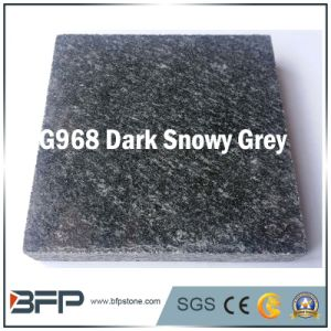 China Popular Granite for Floor Tile & Slab, Step, Riser, Wall pictures & photos