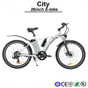 500W Motor Powerful E-Bicycle on Sale E-Bike Electric Bicycle (TDE02Z) pictures & photos