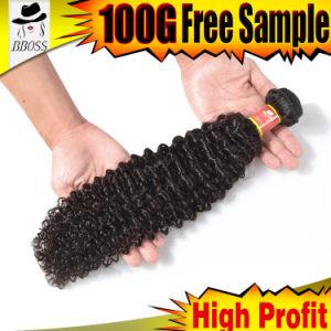 Wholesale Price Brazilian Human Hair Weft Unprocessed Virgin Hair pictures & photos