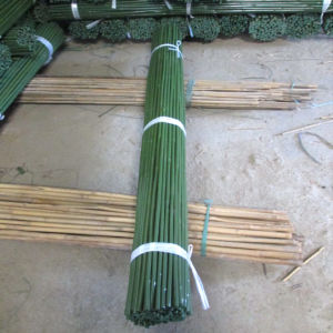 Natural Bamboo by Plastic for Agriculture Use pictures & photos