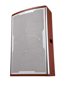 Beautiful 12 Inch Professional Loudspeaker Tk12 pictures & photos
