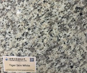 Polished Tiger Skin White Granite Countertop Flooring pictures & photos