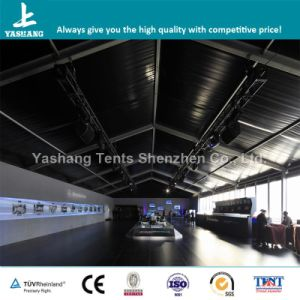 High Quality Event Tent for Car Show From China (YSW10B1201)