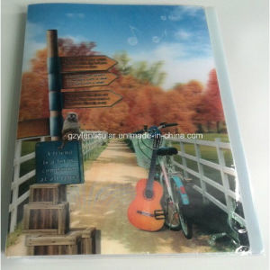 3D Lenticular Folder pictures & photos