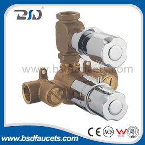 Twin Concealed Thermostatic Shower Valve with Oval Brass Plate pictures & photos
