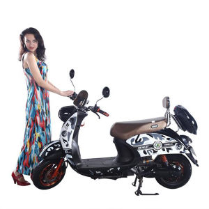 Electric Motorbike with 1200W Motor and 60V Battery