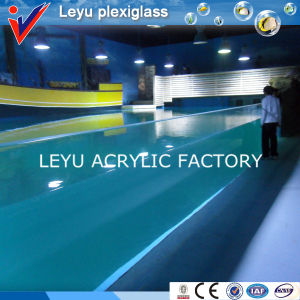 Cast Acrylic Sheet for Swimming Pool pictures & photos