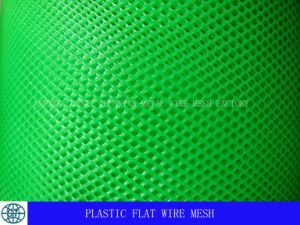 Plastic Flat Wire Mesh for Agriculture Breeding pictures & photos