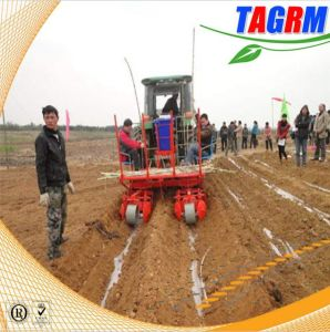 Powerfull Function Combine Sugarcane Planting Machine / Sugar Cane Planter /Cane Seeder Planting Machine