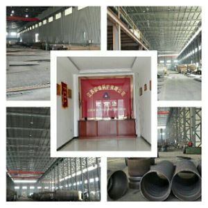 Oil Gas Fired Boiler (WNS0.5T~3T) pictures & photos