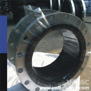 Forged Steel RF Flanged Expansion Joint pictures & photos