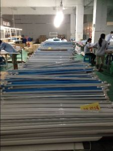 Fatory Sales LED Tube Light with 5 Years Warranty pictures & photos