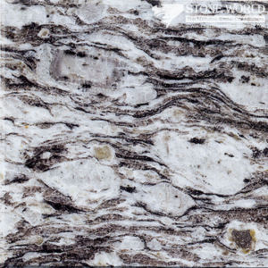 Polished White Oyster Granite for Countertops of Kitchen & Bathroom (MT007) pictures & photos