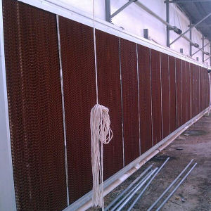 Hot Sale Greenhouse Cooling Pad pictures & photos