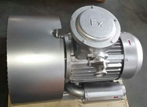 CE Approved Explosion-Proof Atex Ring Blower Pump Biogas Treatment (840H17) pictures & photos